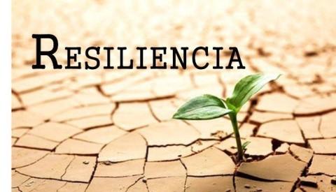 La resiliencia; una habilidad que nos de la felicidad